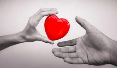 個人で、1日でできるボランティア。献血をしてみよう